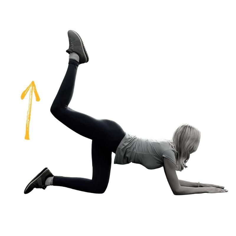 Exercice 1 Donkey kick classique