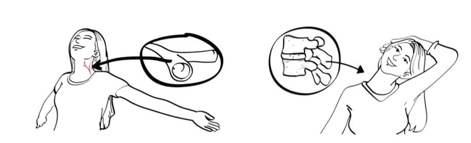 cervical hamac